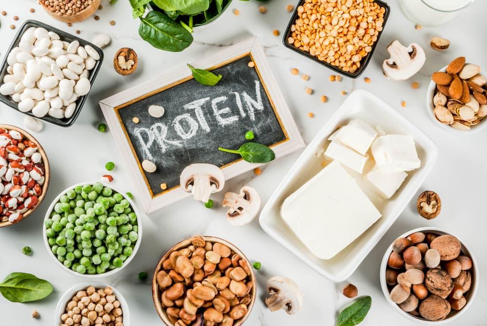 必要な1日のタンパク質の量
