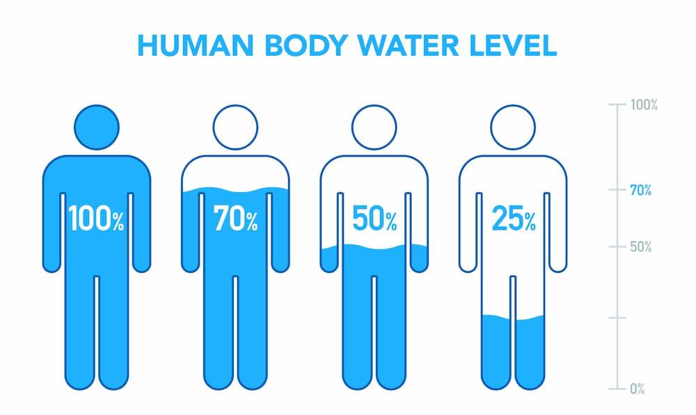 水ダイエットの特徴